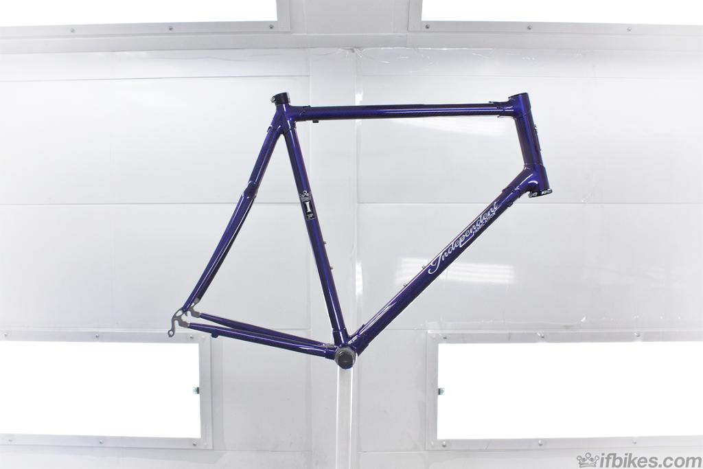 PurpleCorvid_01sm